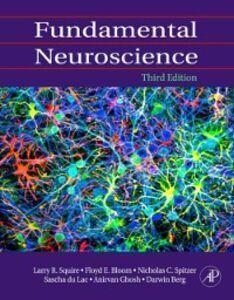 Foto Cover di Fundamental Neuroscience, Ebook inglese di  edito da Elsevier Science