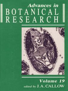 Foto Cover di Volume 19, Ebook inglese di  edito da Elsevier Science