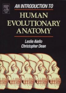 Foto Cover di Introduction to Human Evolutionary Anatomy, Ebook inglese di Leslie Aiello,Christopher Dean, edito da Elsevier Science