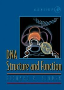 Foto Cover di DNA Structure and Function, Ebook inglese di Richard R. Sinden, edito da Elsevier Science
