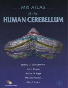 Ebook in inglese MRI Atlas of the Human Cerebellum Doyon, Julien , Evans, Alan C. , Petrides, Michael , Schmahmann, Jeremy D.