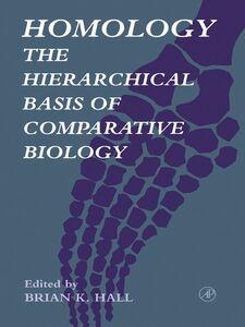 Ebook in inglese Homology