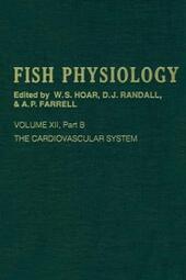 Cardiovascular System, Part B