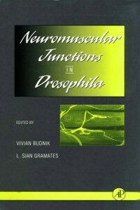 Foto Cover di Neuromuscular Junctions in Drosophila, Ebook inglese di  edito da Elsevier Science