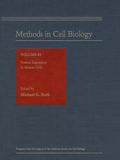 Protein Expression in Animal Cells