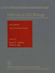 Ebook in inglese Green Fluorescent Proteins -, -