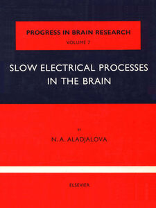 Ebook in inglese Slow Electrical Processes in the Brain