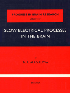 Ebook in inglese Slow Electrical Processes in the Brain -, -