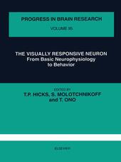 The Visually Responsive Neuron