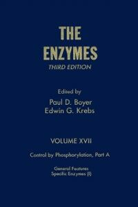 Foto Cover di Enzymes, Ebook inglese di Author Unknown, edito da Elsevier Science