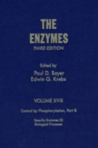 Foto Cover di Enzymes, Ebook inglese di Author Unknown, edito da Elsevier Science