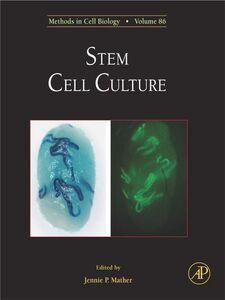 Ebook in inglese Stem Cell Culture