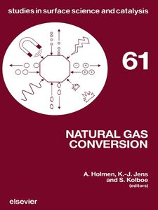 Ebook in inglese Natural Gas Conversion -, -