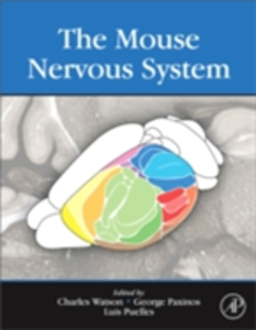 Ebook in inglese Mouse Nervous System -, -