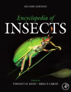 Ebook in inglese Encyclopedia of Insects -, -