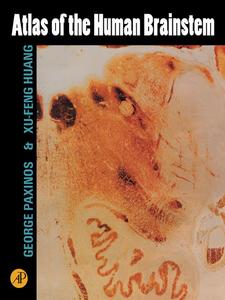 Ebook in inglese Atlas of the Human Brainstem Huang, Xu-Feng , Paxinos, George