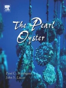 Ebook in inglese Pearl Oyster