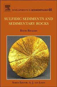 Ebook in inglese Sulfidic Sediments and Sedimentary Rocks Rickard, David