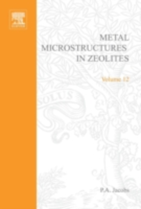 Ebook in inglese Metal Microstructures in Zeolites -, -