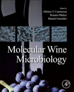 Foto Cover di Molecular Wine Microbiology, Ebook inglese di  edito da Elsevier Science