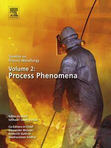 Foto Cover di Treatise on Process Metallurgy, Volume 2, Ebook inglese di  edito da Elsevier Science
