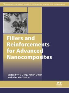 Ebook in inglese Fillers and Reinforcements for Advanced Nanocomposites