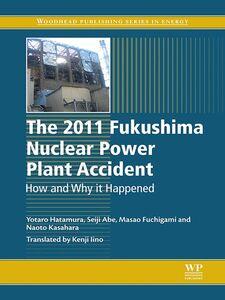 Ebook in inglese The 2011 Fukushima Nuclear Power Plant Accident Abe, Seiji , Fuchigami, Masao , Hatamura, Yotaro , Iino, Kenji
