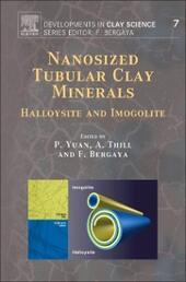 Nanosized Tubular Clay Minerals