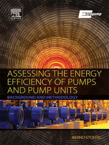 Ebook in inglese Assessing the Energy Efficiency of Pumps and Pump Units Stoffel, em. Dr.-Ing Bernd