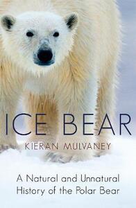 Ice Bear: A Natural and Unnatural History of the Polar Bear - Kieran Mulvaney - cover