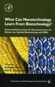 What Can Nanotechnology