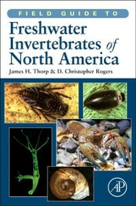 Ebook in inglese Field Guide to Freshwater Invertebrates of North America