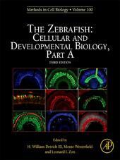 The Zebrafish