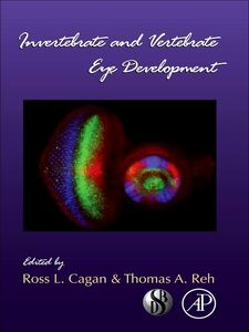 Ebook in inglese Invertebrate and Vertebrate Eye Development -, -