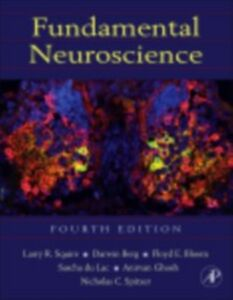 Foto Cover di Fundamental Neuroscience, Ebook inglese di  edito da Elsevier Science