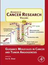 Guidance Molecules in Cancer and Tumor Angiogenesis