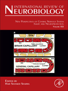 Ebook in inglese New Perspectives of Central Nervous System Injury and Neuroprotection