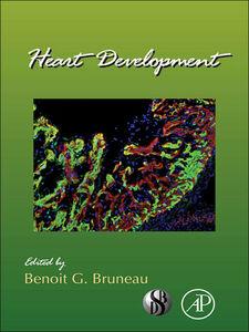 Ebook in inglese Heart Development