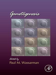 Ebook in inglese Gametogenesis -, -