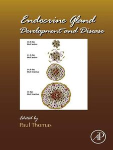 Ebook in inglese Endocrine Gland Development and Disease