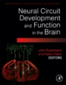 Ebook in inglese Neural Circuit Development and Function in the Healthy and Diseased Brain -, -