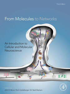 Ebook in inglese From Molecules to Networks