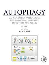 Autophagy, Volume 3