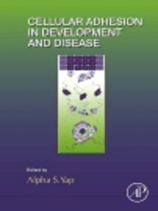Ebook in inglese Cellular Adhesion in Development and Disease