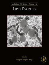 Lipid Droplets