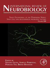 Tissue Engineering of the Peripheral Nerve