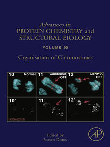 Foto Cover di Organisation of Chromosomes, Ebook inglese di  edito da Elsevier Science