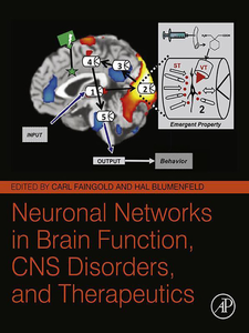 Ebook in inglese Neuronal Networks in Brain Function, CNS Disorders, and Therapeutics -, -