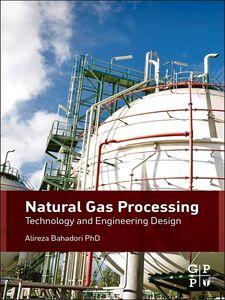 Ebook in inglese Natural Gas Processing Bahadori, Alireza