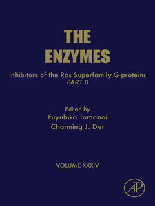 Ebook in inglese Inhibitors of the Ras Superfamily G-proteins, Part B